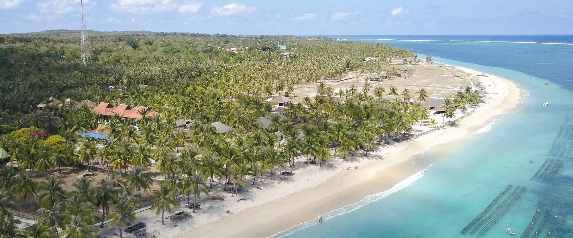 palmtrees water ocean see nemberala beach anugerah hotel indonesia rote island