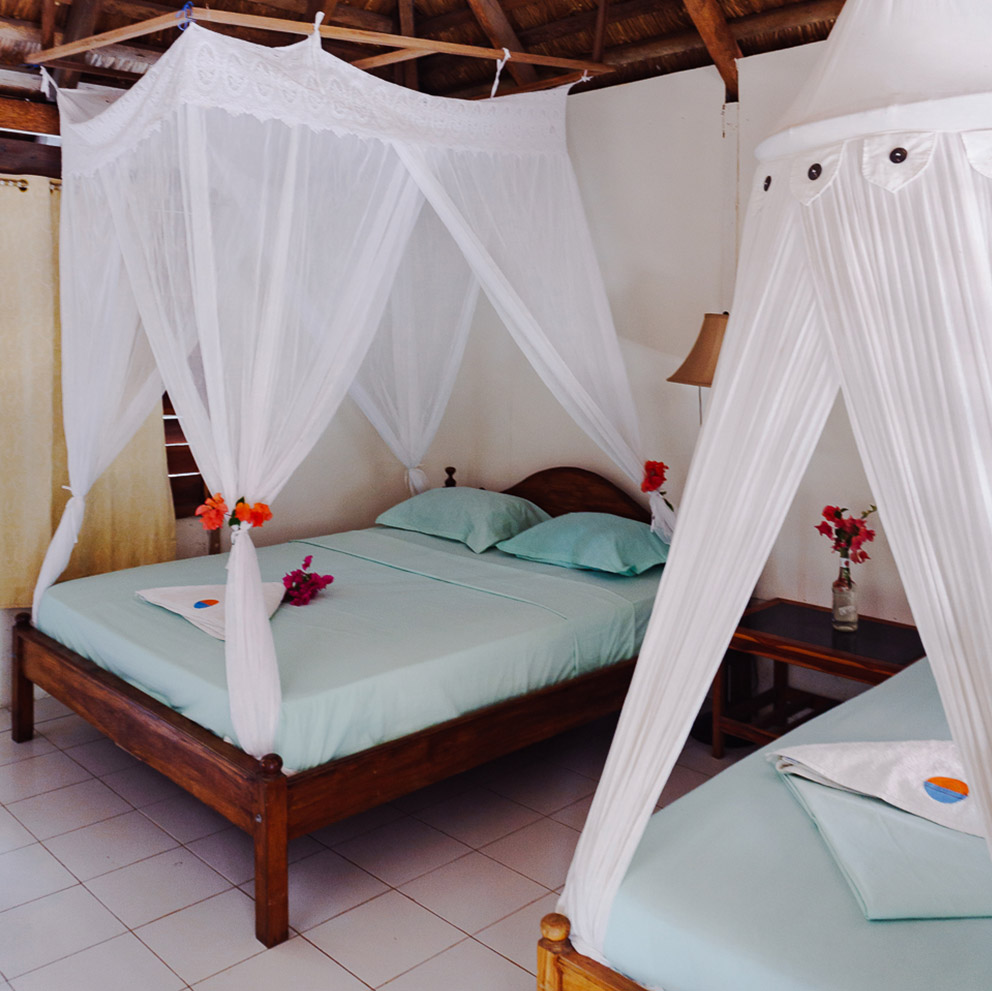 standard room anugerah resort hotel indonesia t land rote island